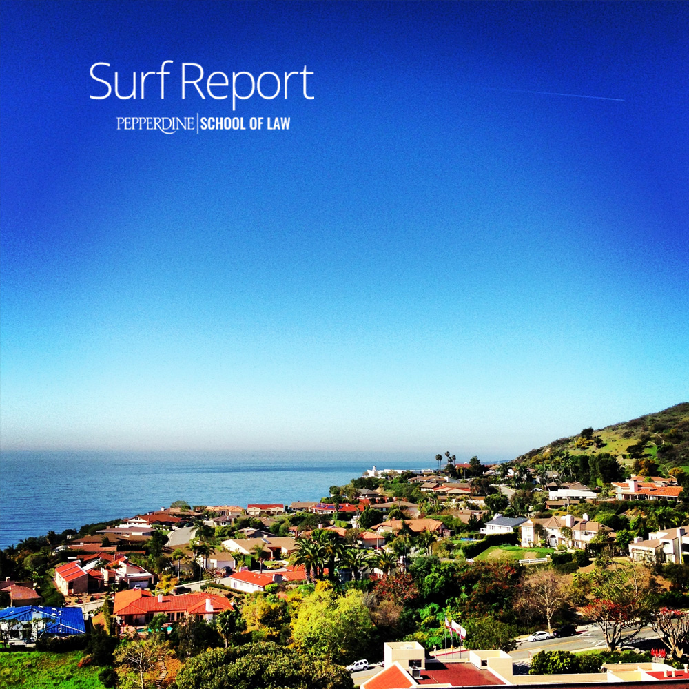 work_surf-report